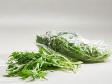 Mizuna saláta, bio (10 dkg/csomag)