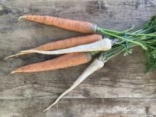 Vegyes zöldség (6 sárgarépa, 3 fehérrépa)